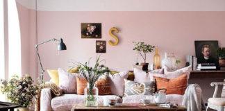 Róż w pomieszczeniach