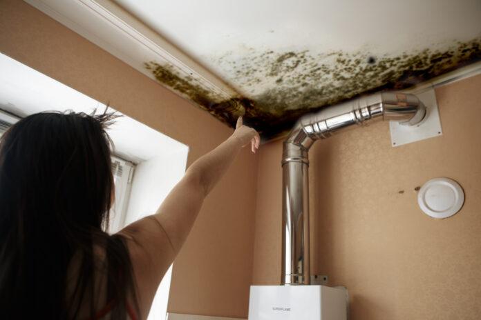 jak uniknąć pleśni w łazience?